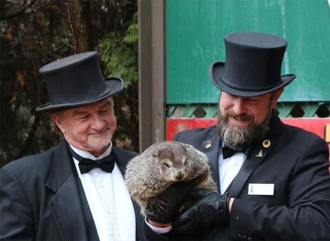 Groundhog Day, Again