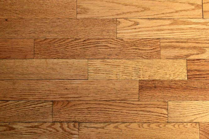 My wood floors haven't been properly cleaned in 15 years. How can I bring them back to life?
