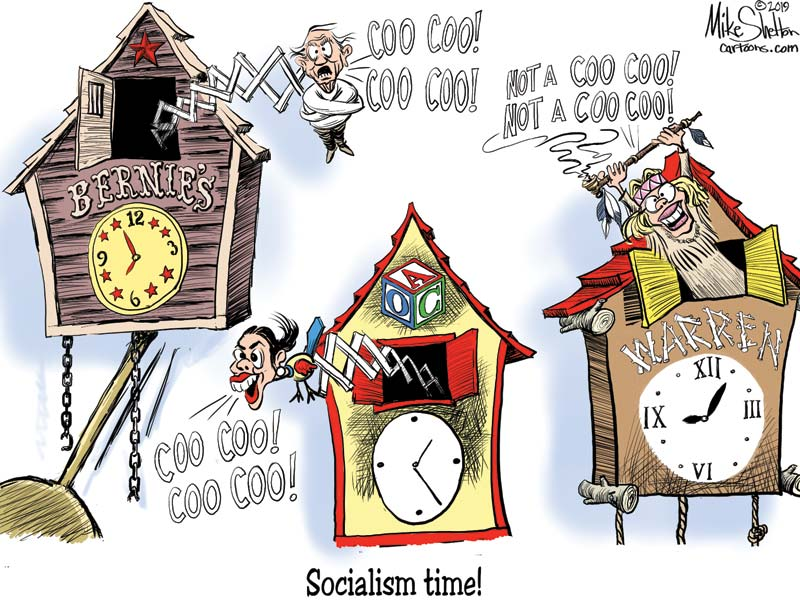 Dems use Nordic nations as models of socialism. They actually involve a lot of capitalism
