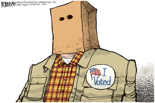 If the little things get to you, then you're probably a voter